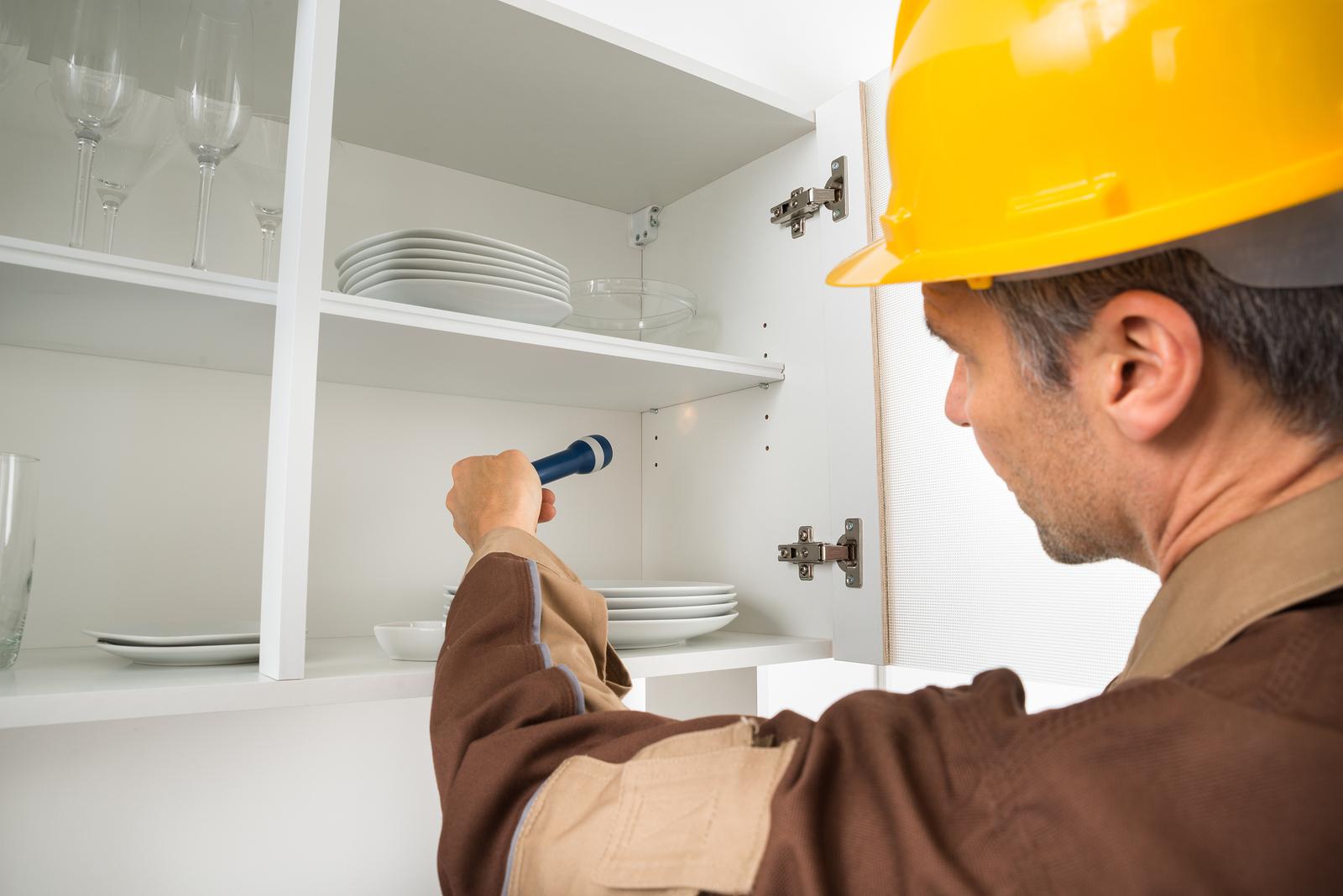 Pest Control Worker Checking Shelf